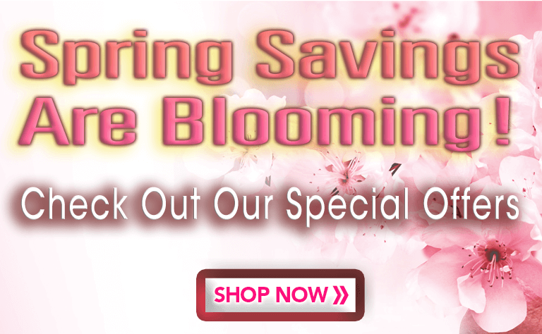 Spring Special Offers Mob