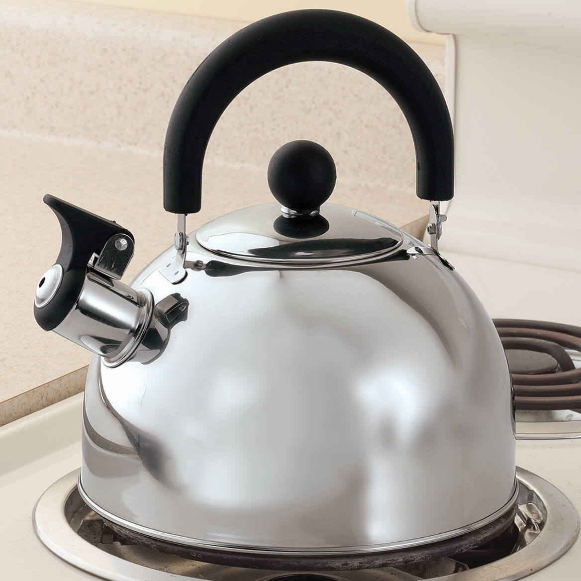 Stainless Steel Whistling Tea Kettle by Home-Style Kitchen-353542