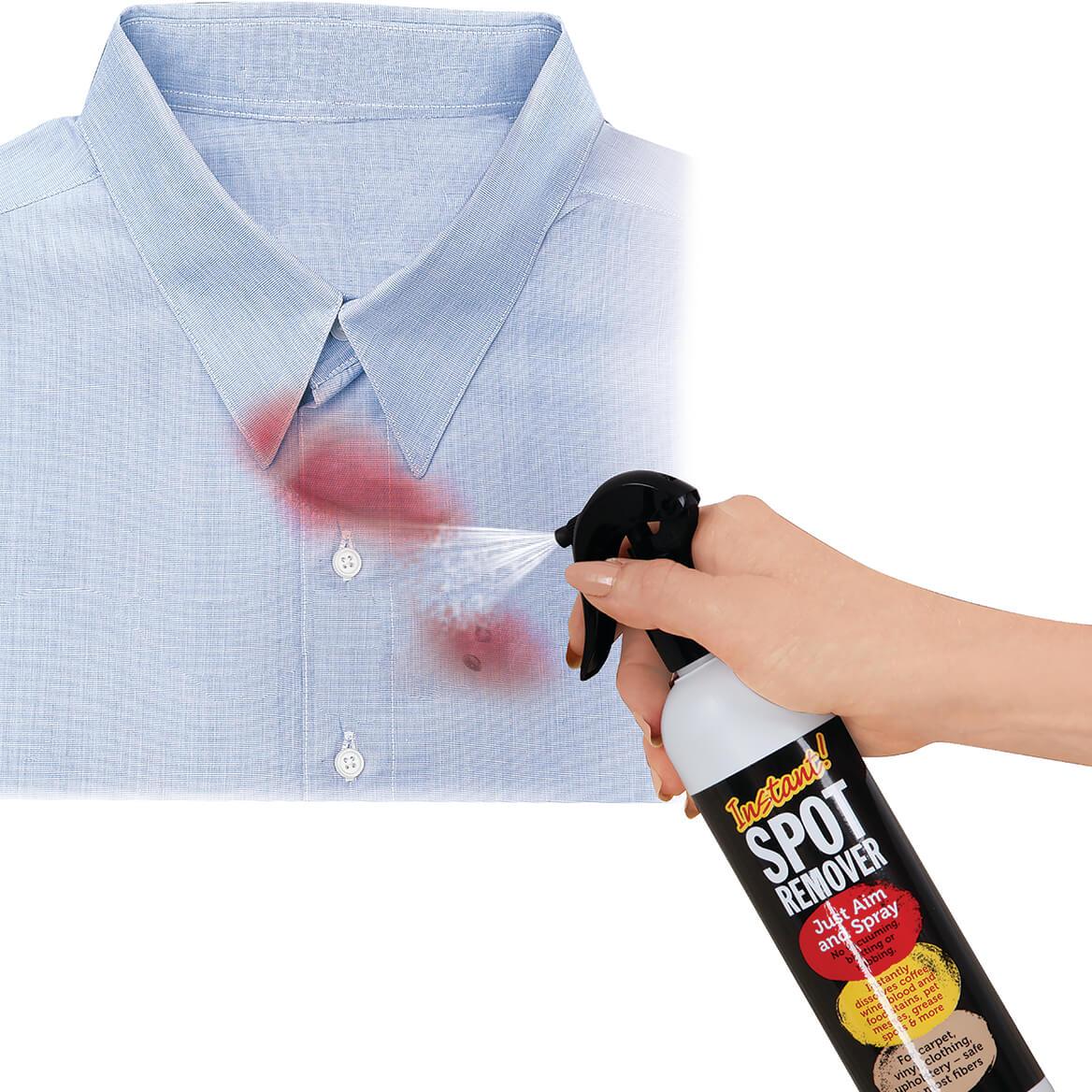 Instant Spot Remover 12 oz.-364586