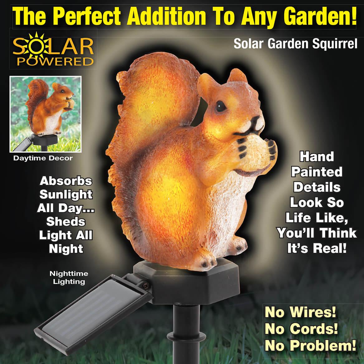 Solar Garden Squirrel-369701