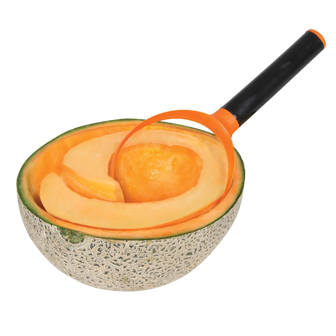 Fruit Scoops-369875