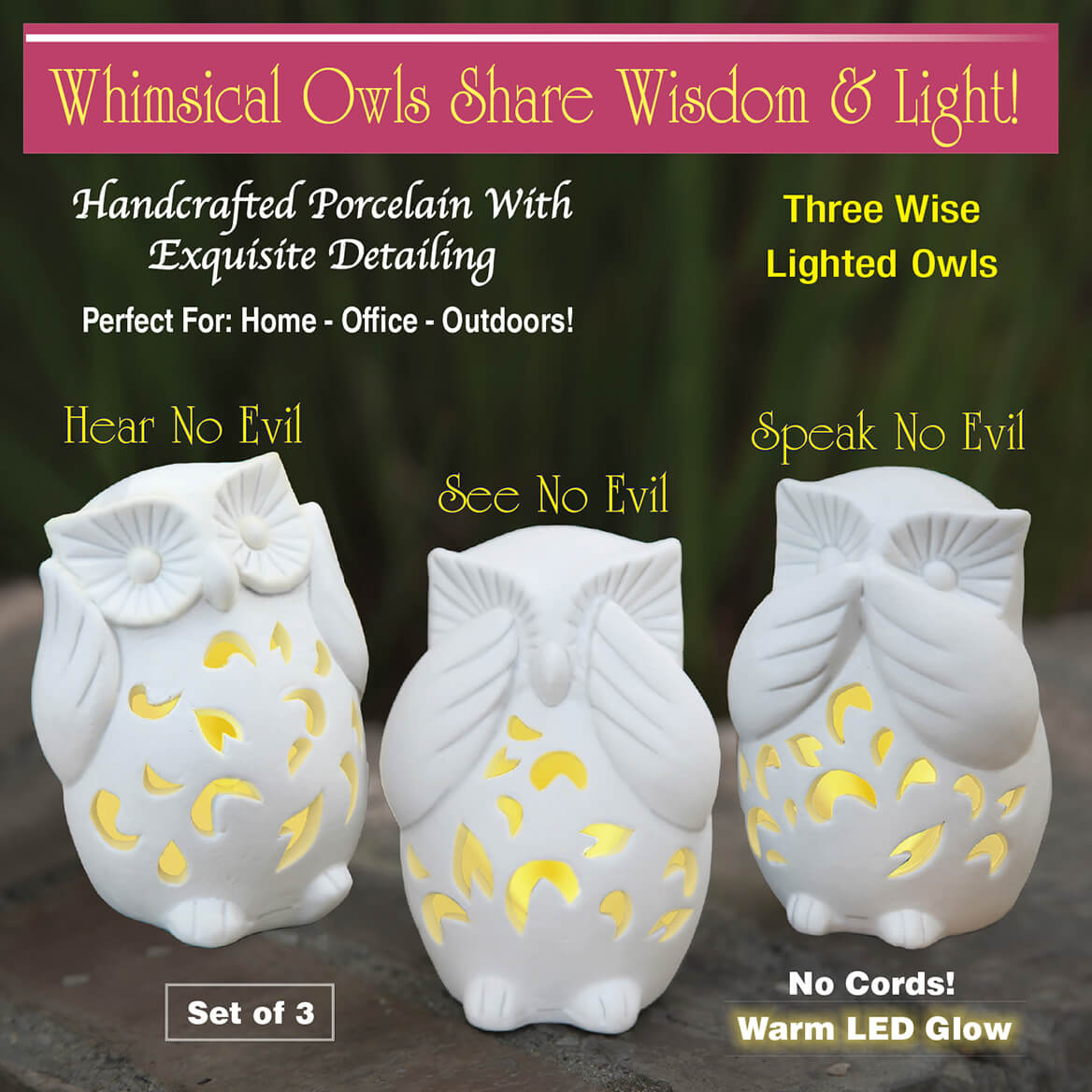 Three Wise Lighted Owls-369876