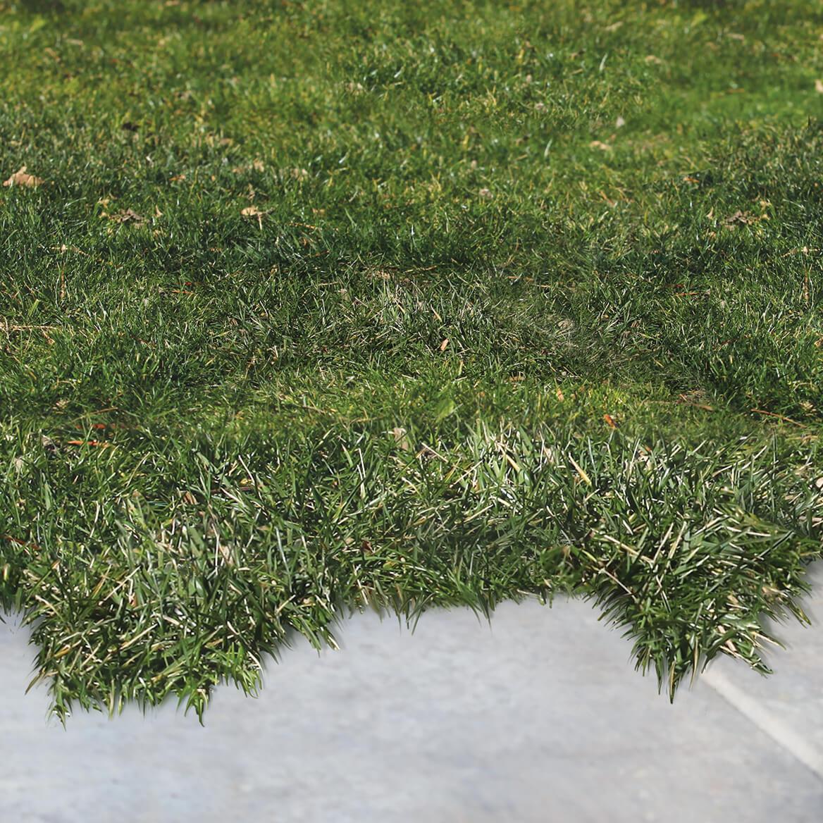 Garden Pro Landscape Edging-370236