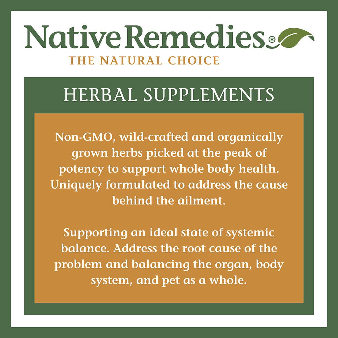 NativeRemedies® Elderberry+ Immune Support-370984